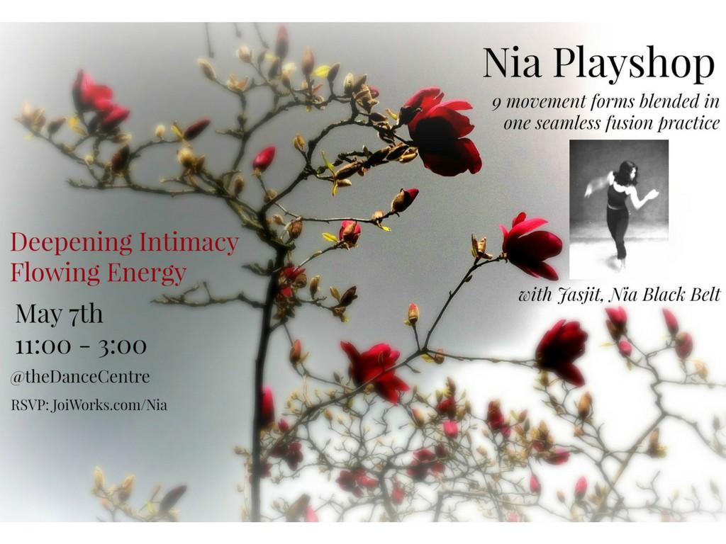 Nia Playshop May '17
